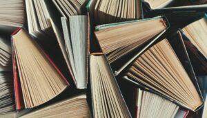Writing Fun YouTube: Book Review